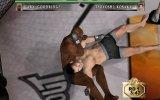 UFC:TAPOUT
