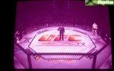 UFC Tapout - Pal