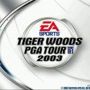 Tiger Woods PGA Tour 2003 - Trucchi
