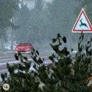World Rally Championship 2004 sfreccia in video ed in foto