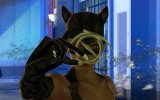 La soluzione completa di Catwoman