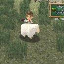 Harvest Moon: Save the Homeland e Harvest Moon: A Wonderful Life Special Edition arrivano su PlayStation 4?