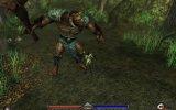 PC Release - Maggio 2007
