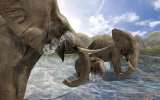 Wild Earth: Africa - Recensione