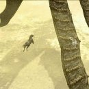 Shadow of the Colossus - Trucchi