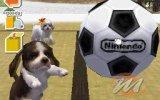 Nintendogs: Dalmatians&Friends
