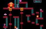 Nstory presents: Donkey Kong & Donkey Kong Jr.