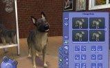 The Sims 2: Pets - Approfondimento