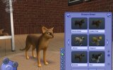 The Sims 2: Pets - Recensione