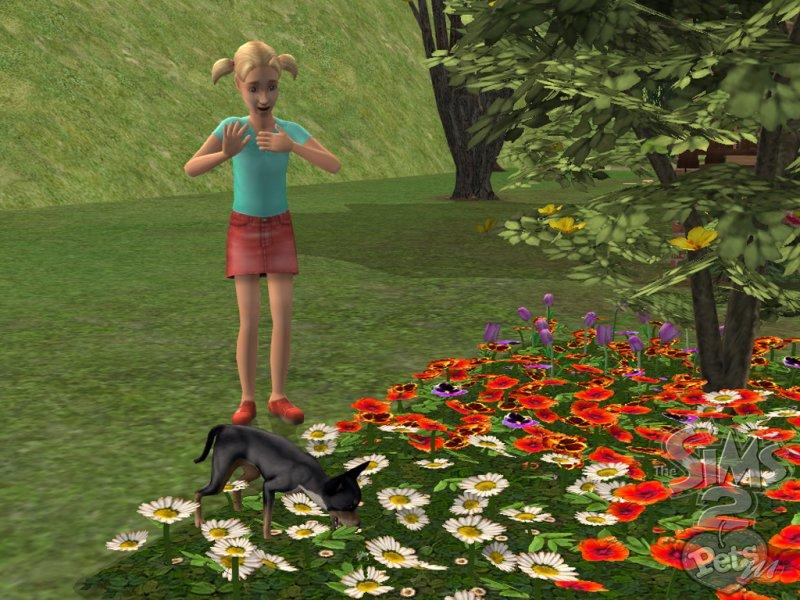 La soluzione completa di The Sims 2