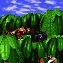 Donkey Kong: le origini del mito