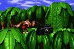 Donkey Kong: le origini del mito - Speciale