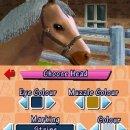 Pony Friends - Anteprima