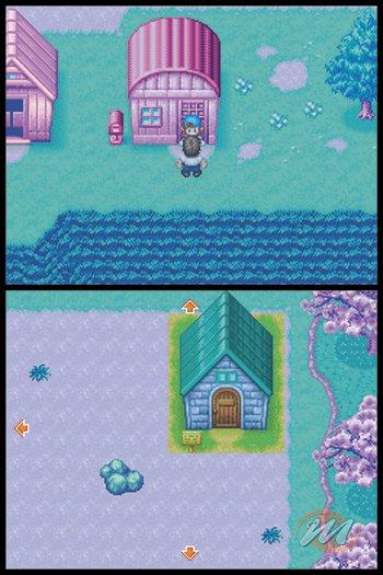 La Soluzione di Harvest Moon DS