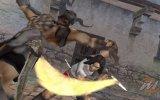 Prince of Persia: Rival Sword - Recensione