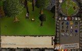 Vivere Online - Browser Game