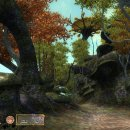 The Elder Scrolls IV: Oblivion - Game of the Year Edition - Trucchi