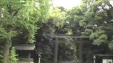 Videodiario A Japans Life