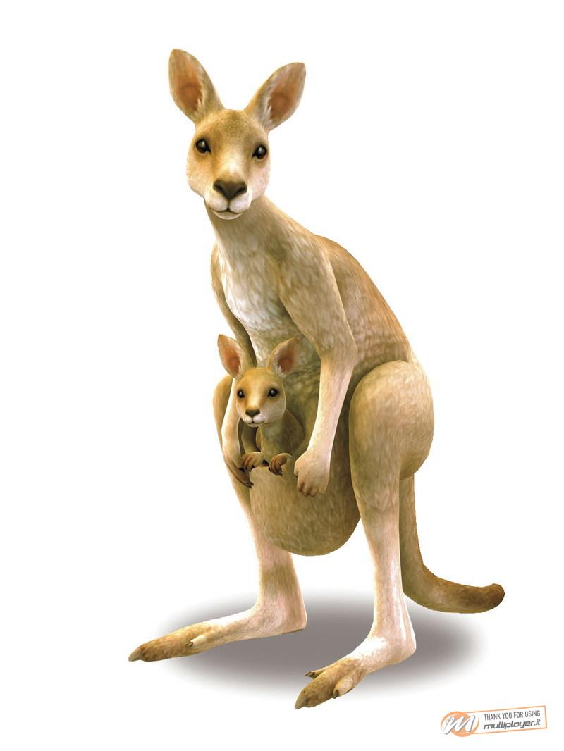 My Animal Centre in Australia - Recensione