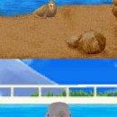 Dolphin World - Provato