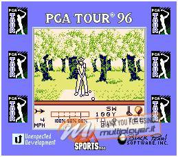 PGA Tour Golf '96
