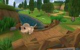 The Dog Island - Recensione