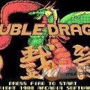 Double Dragon in arrivo su Nintendo 3DS e Wii
