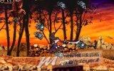 [GC 2008 - E3 2008] Castlevania: Order of Ecclesia - Provato