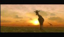Afrika filmato #5