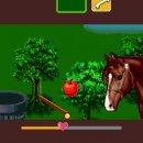 Scuola d'Equitazione