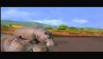 Afrika filmato #6