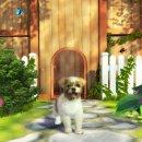 Petz Sports: Dog Playground - Trucchi