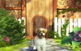 Petz Sports: Dog Playground - Recensione