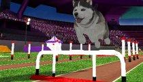 Petz Sports Dog Playground - Trailer
