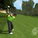 Tiger Woods 09 (iPhone)