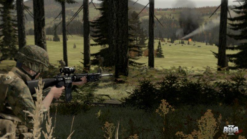 ArmA II ancora in video