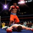 Aggiornamenti in vista per Fight Night Round 4