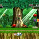 Adventure Island Wii - Trucchi