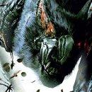 Ancora un video per Monster Hunter: Freedom Unite
