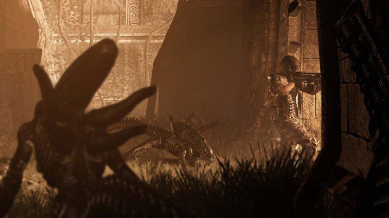 Una patch per Aliens vs Predator su PC