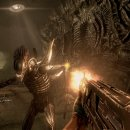 Patch per le versioni console di Aliens vs Predator
