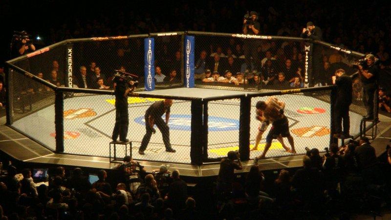 Il terzo episodio di UFC impressiona il boss di THQ