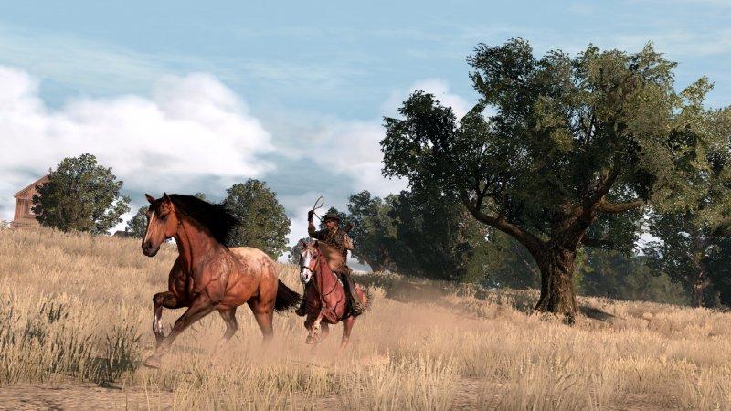 Cavalli, che passione!