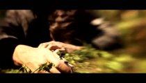 Alan Wake - Trailer dal vivo
