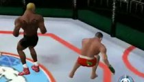 Ultimate Fighting Championship - Gameplay