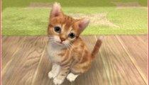 Nintendogs + Cats - Gameplay