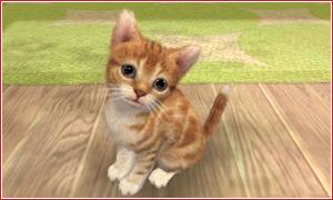 Nintendogs + Cats: 1,71 milioni di copie in giro per il mondo