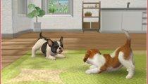 Nintendogs + Cats - Gameplay #2