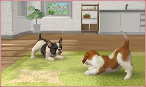 Nintendo Release - Marzo 2011