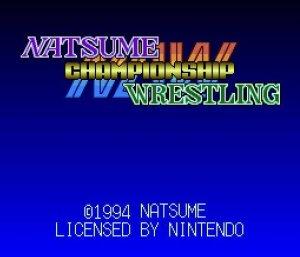 Natsume Championship Wrestling per Nintendo Wii